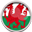 National Team: Wales